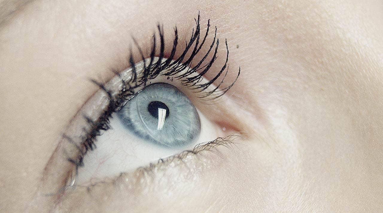 gute pflege macht eine gute kontaktlinse kuratorium. Black Bedroom Furniture Sets. Home Design Ideas